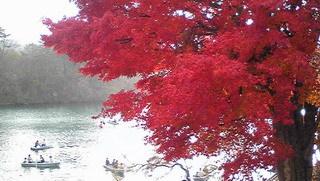 五色沼のボート.jpg